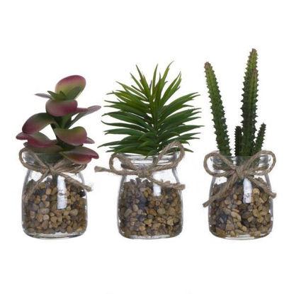 cial22212270-cactus-en-maceta-crist