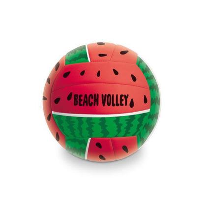 mond139052-balon-beach-volley-fruit