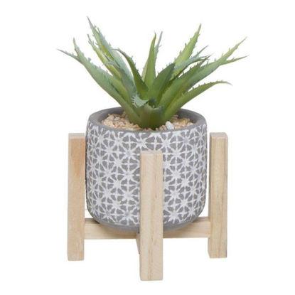 cial291556-maceta-cactus-base-mader