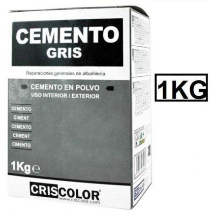 cris6528-cemento-en-polvo-gris-ecob