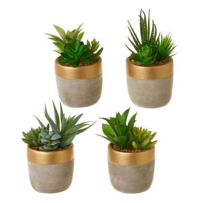unim800127-cactus-plastico-9x9x17cm