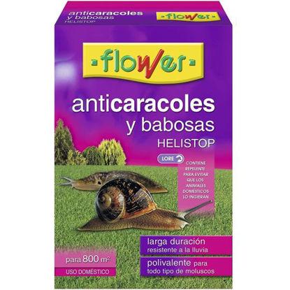 ower20569-anticaracoles-seguridad-5